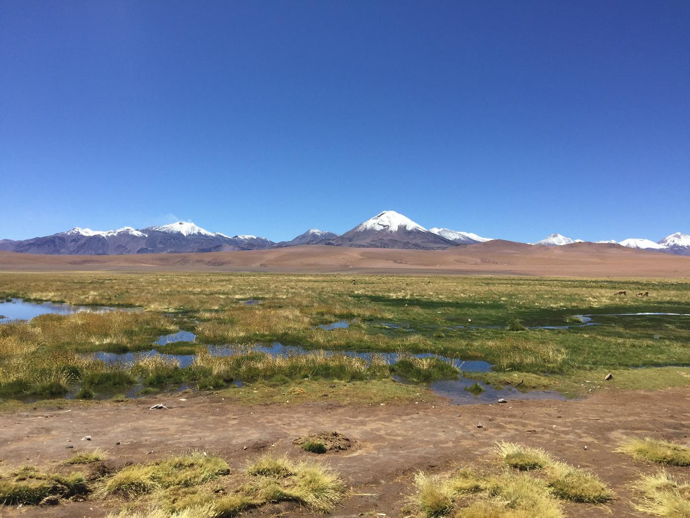 El Norte de Chile